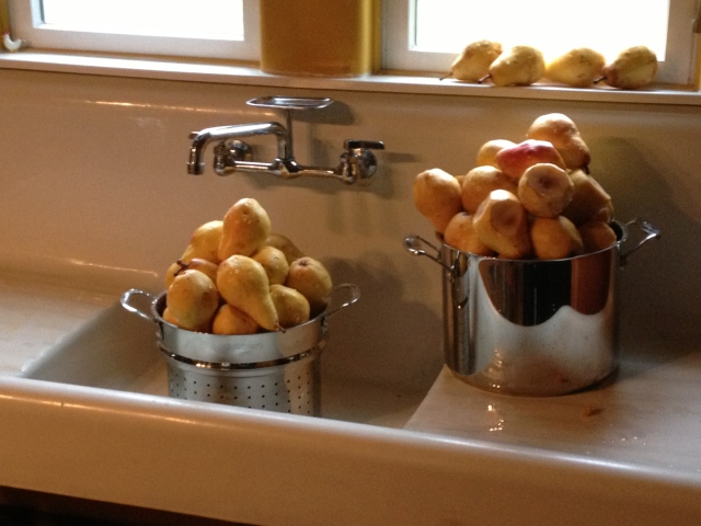 more pears in sink